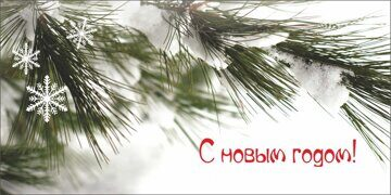 new_year_55-2